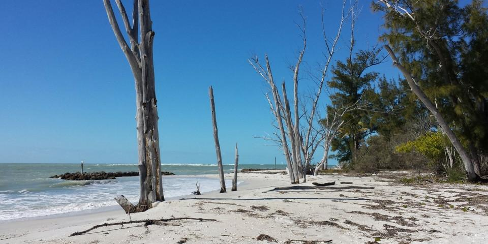 Turquoise sand beach