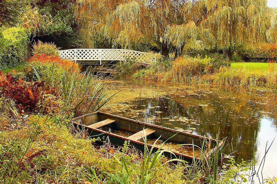 Idyllic pond with plants around