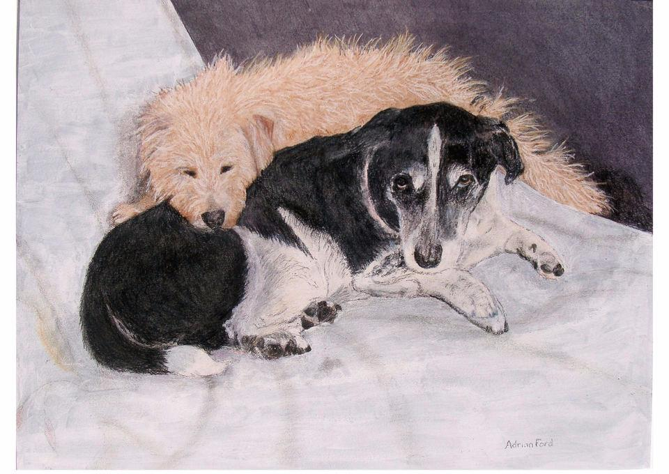 dogs, animals, painting