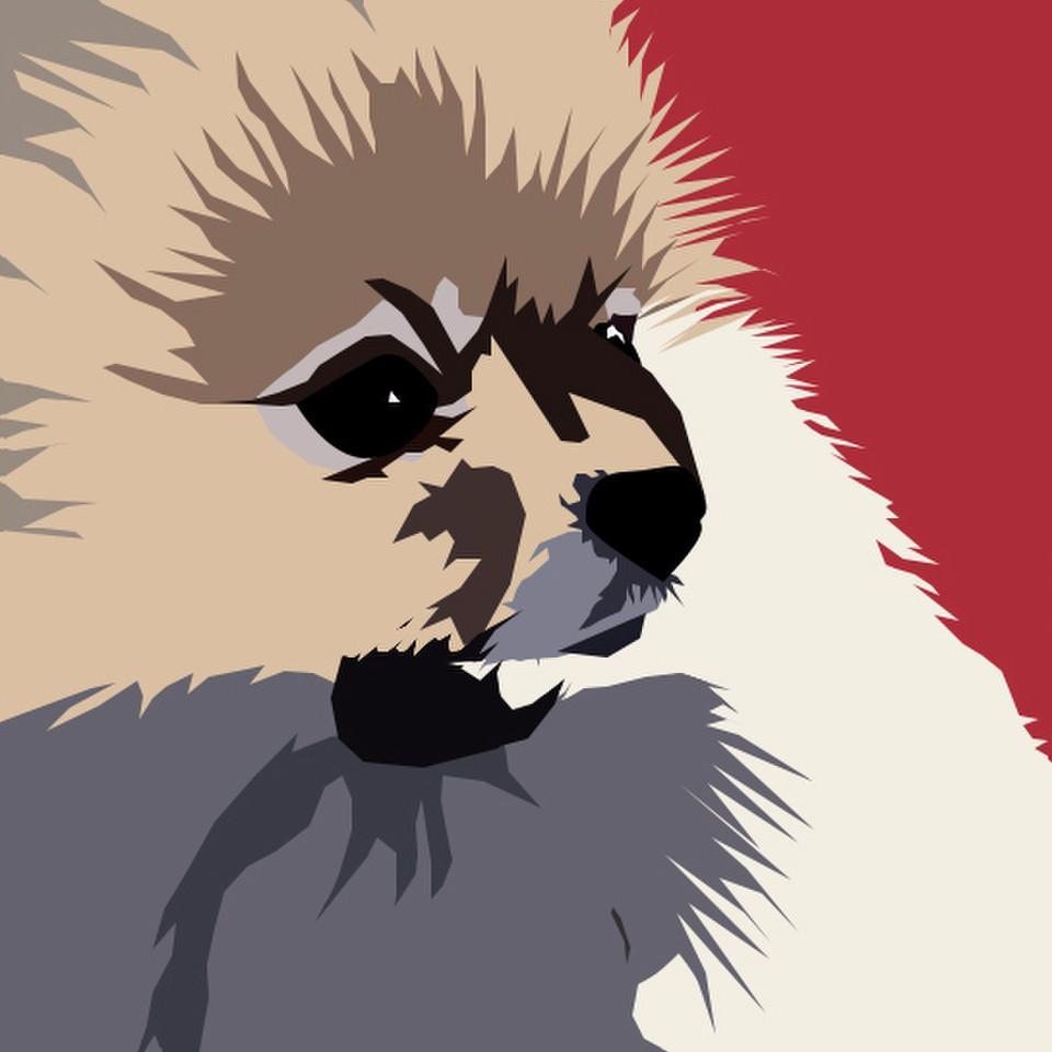 animals, dogs, pop art