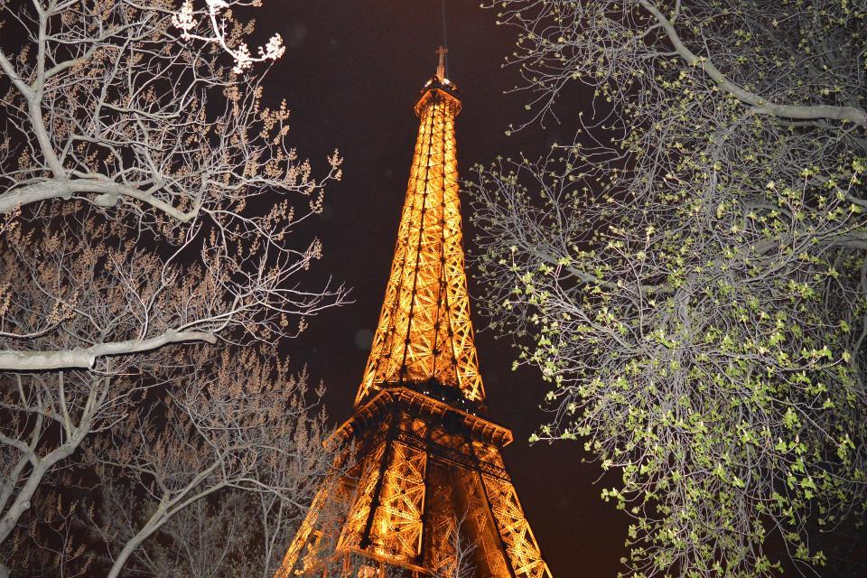 Paris, France, Eiffel Tower, trip, sights