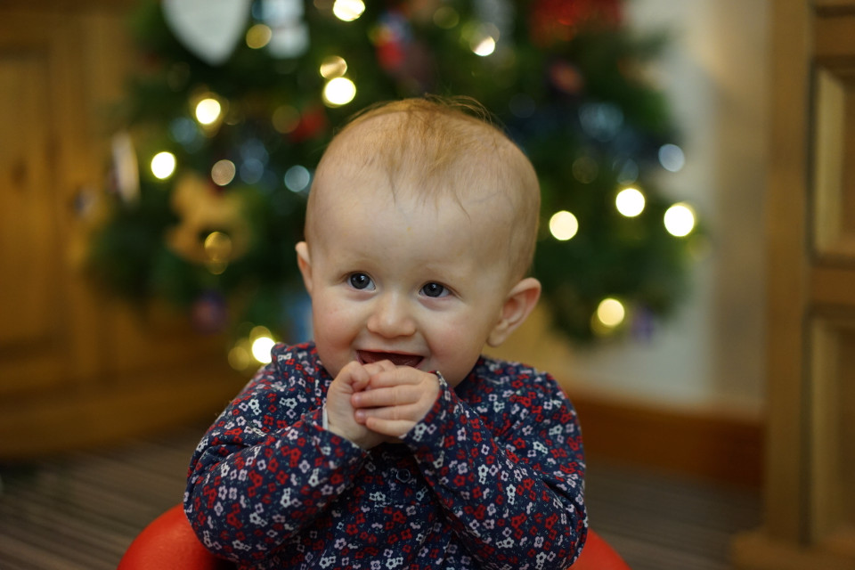 Christmas, baby, kid, happy baby, Christmas tree, Christmas baby