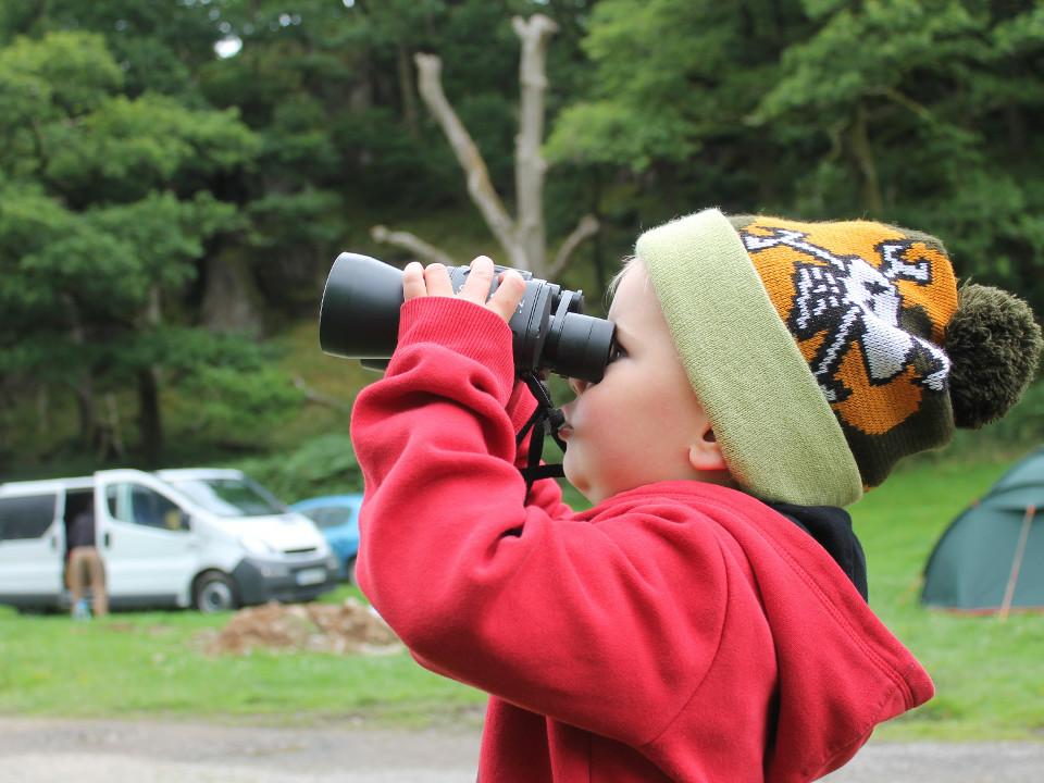 camping, first camping, kid, binoculars, scouting