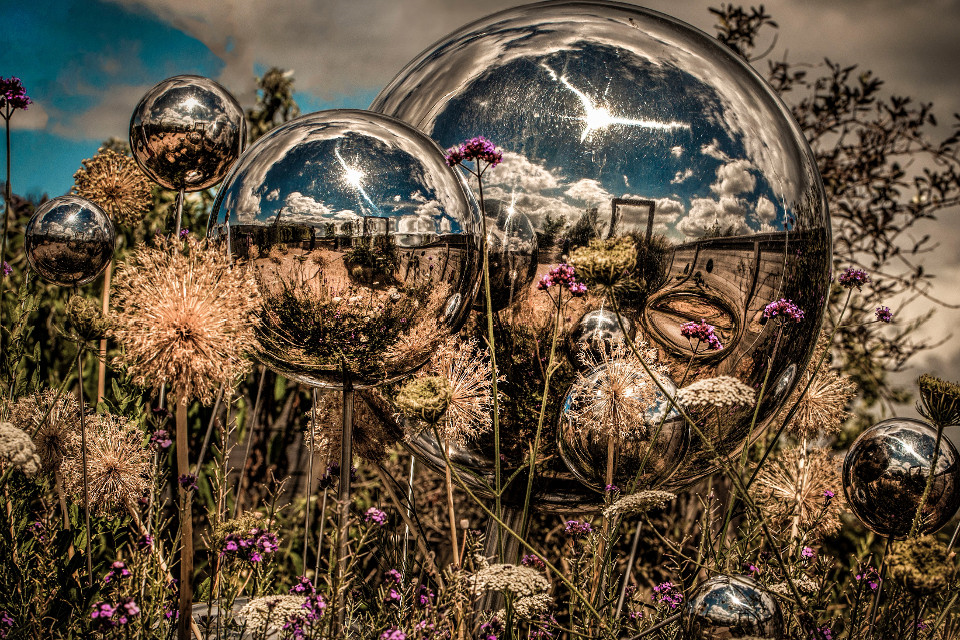 Photography, plants, surreal, bubbles, illusion