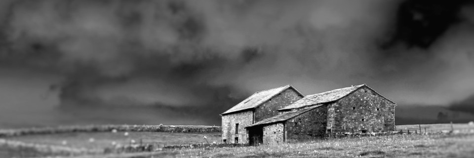 house, countryside, b & w, monchrome, art photo, diorama effect