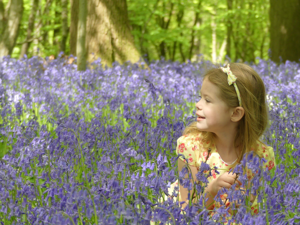 Meadow, Girl, flowers, purple, spring, sun, inspiration, youth, kid